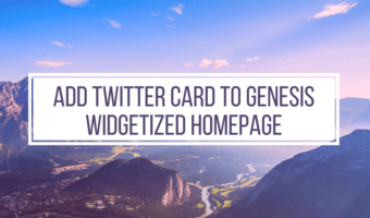 Add Twitter Card to Genesis Widgetized Homepage
