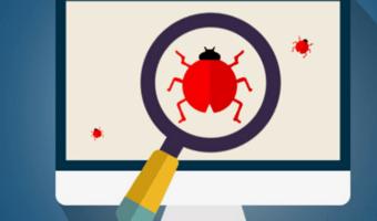 Report bugs in WordPress